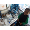 Counting the arctic animals