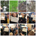 Year 1 use their senses to search for adjectives