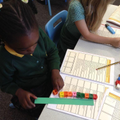 Year 1 use cubes to measure the length of objects