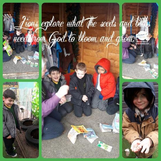 We explored seeds and read the instructions