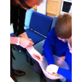 Making observations about the porridge oats,