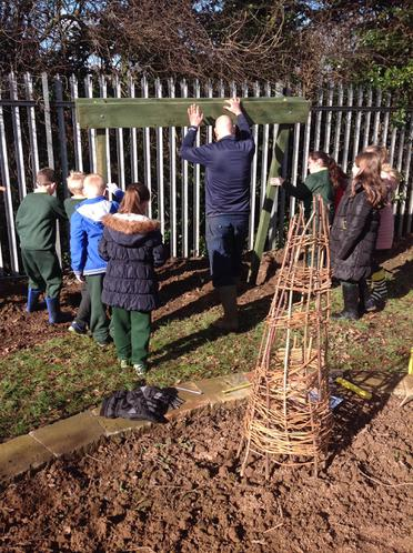 Beginning to assemble the bird feeding station