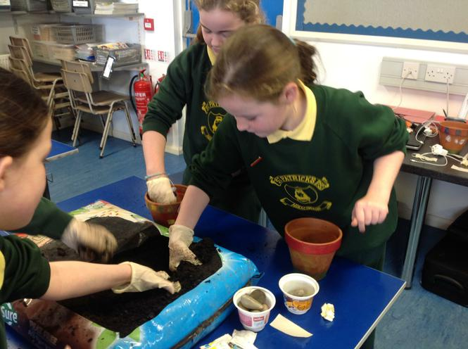 Filling our pots with soil
