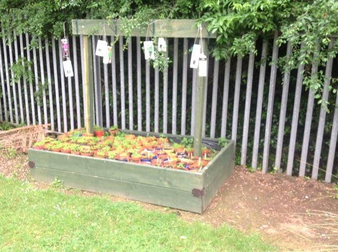 Bird feeding station with pots underneath