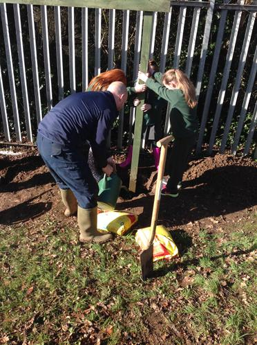 Stabilising the posts