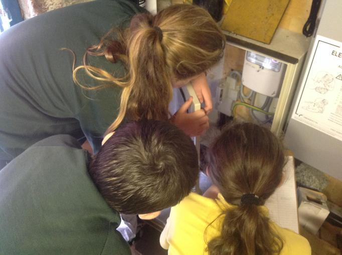 Taking electric meter readings