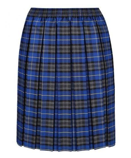 School skirt (pleated)