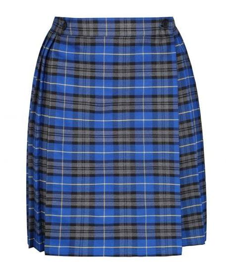 School skirt (flat-fronted)