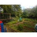 Vegetable garden view 2
