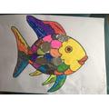 Helena's rainbow fish