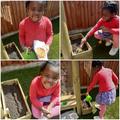 Gardener Ariella!