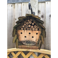 Alfie's bug house