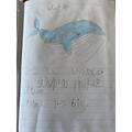 Evie's whale :)