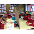 Using a mirror to see around an opaque object.