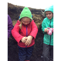 Squeezing to examine how peat acts like a sponge