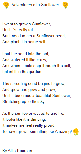 Alfie's Sunflower Poem