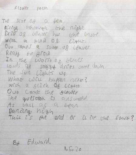 Edward's Flower Poem