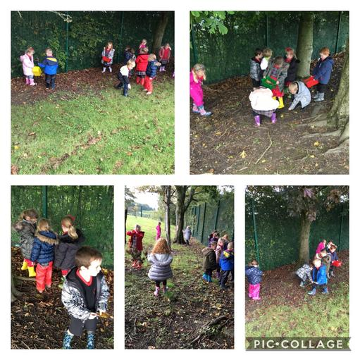 Searching for sticks and treasure