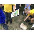 Exploring micro-habitats.
