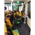 Is a plant alive?  Super Science learning from year 3 this week!