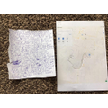 Tj's letter and map work.