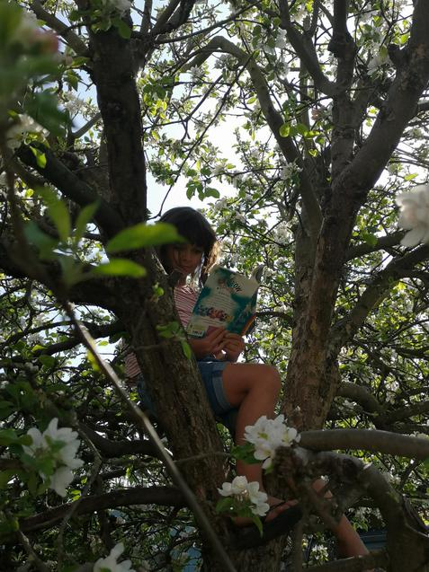 Thea found some peace to read up a tree!