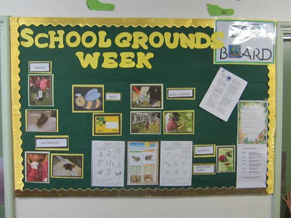 School Grounds Week 2013