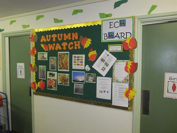 Autumn Watch 2013