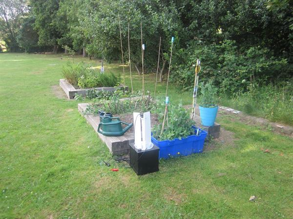 Mothtrap and Allotments