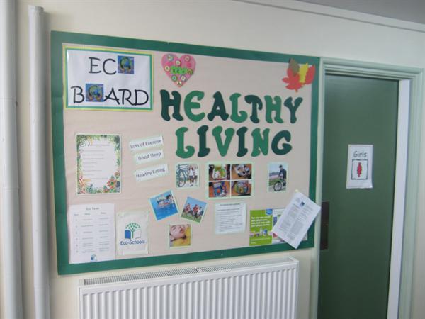 Healthy Living Eco Board