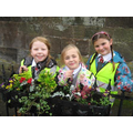 Planting in the Caverswall village