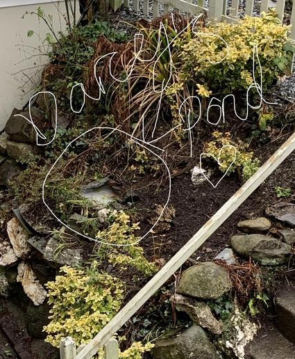 Creating a garden pond!