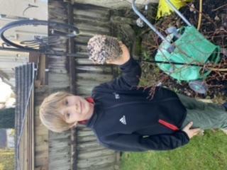 More bird feeders