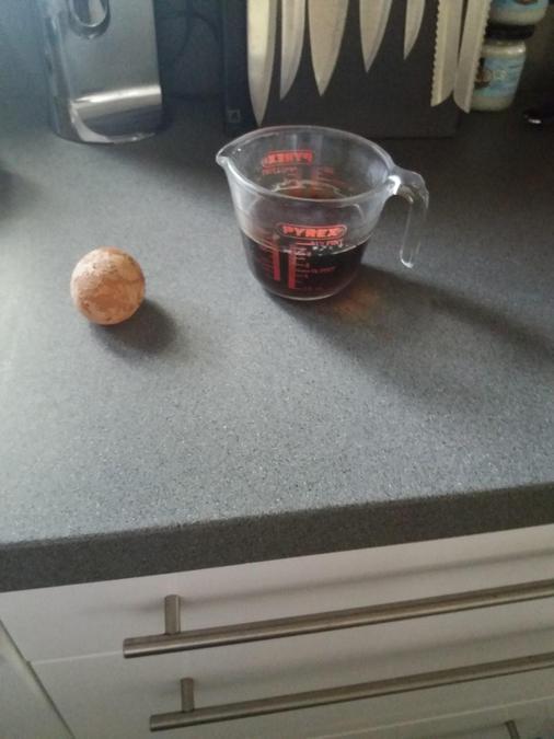 Corey's eggciting experiment