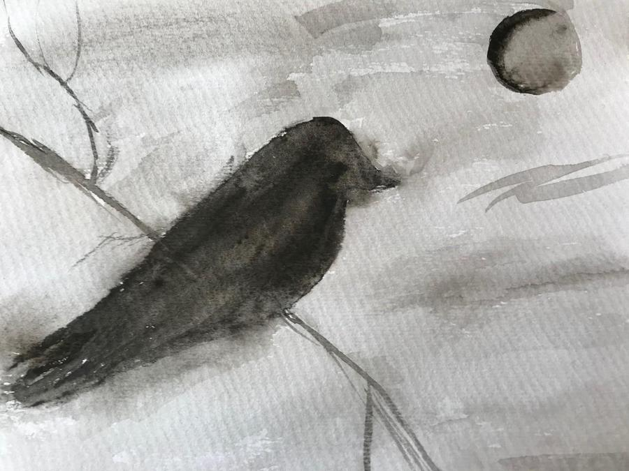 Rosa's charcoal art blackbird