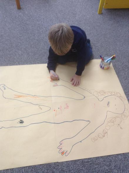 We drew around a body and wrote labels for the body parts.