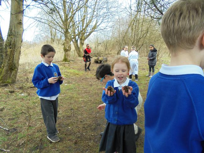 Foraging for pine cones to stoke the fire.