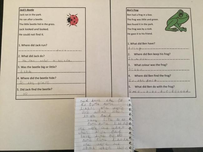Wow Stevie! You completed both reading challenges and your phonics task. Superb!