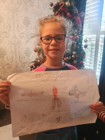 Evie M's amazing pictures, with added facts!