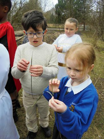 Celts peeled rushes to make wicks for 'candles'.