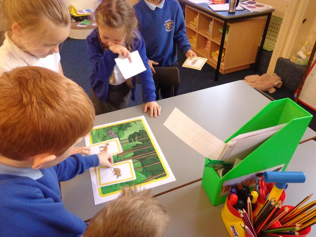 Working in groups to sort animals into habitats