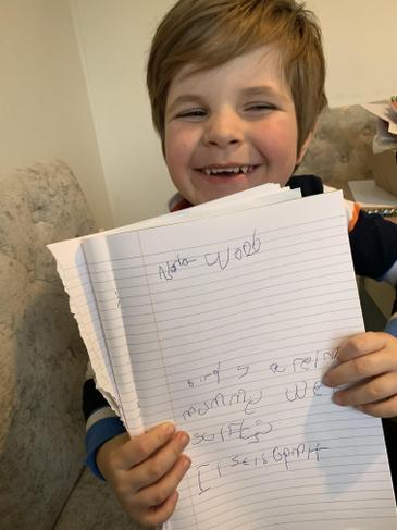 Noah's 'ir' sentences. You are wonderful!
