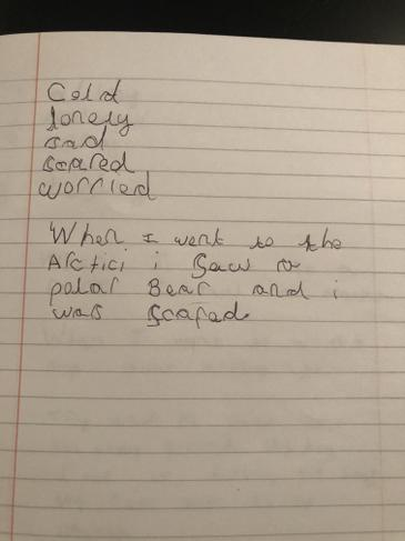 Stevie's brilliant topic work!