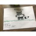 Luca's racoon