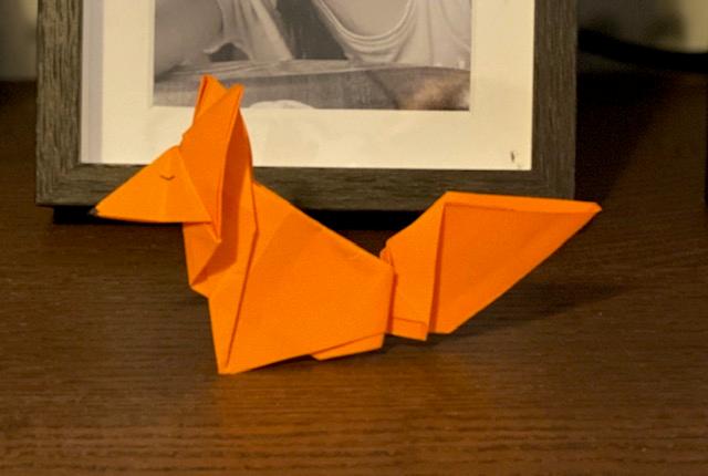 Luisa has been doing some origami.