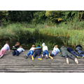 By laying on our fronts, we could look closely in the pond as well as stay safe
