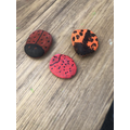Making ladybirds at home