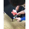 Finding out about bees and pollination