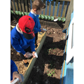 Looking after our FS2 garden