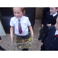 Can you make the mouse a habitat?